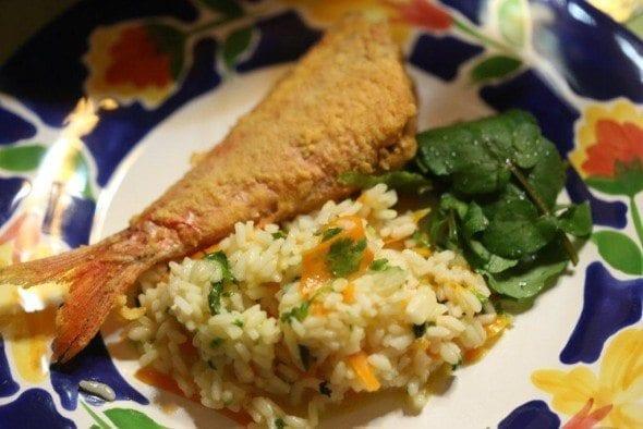Arroz de cenoura com coentros arroz de cenoura Arroz de cenoura com coentros 8E6B8603 590x394