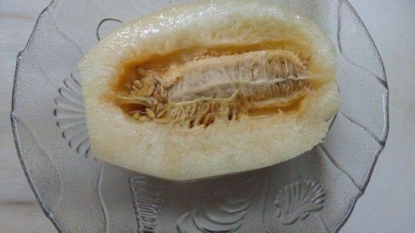 Sopa de Melão sopa de melão Sopa de Melão P7300232 590x332