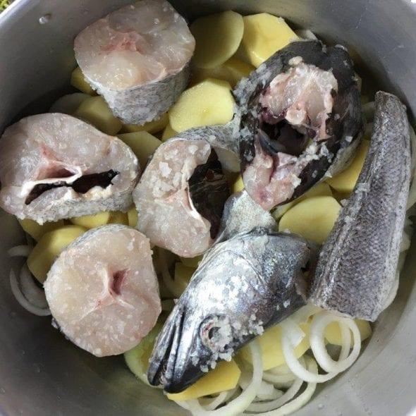 PESCADA COM ALHO E COENTROS pescada com alho e coentros - Pescada com Alho e Coentros