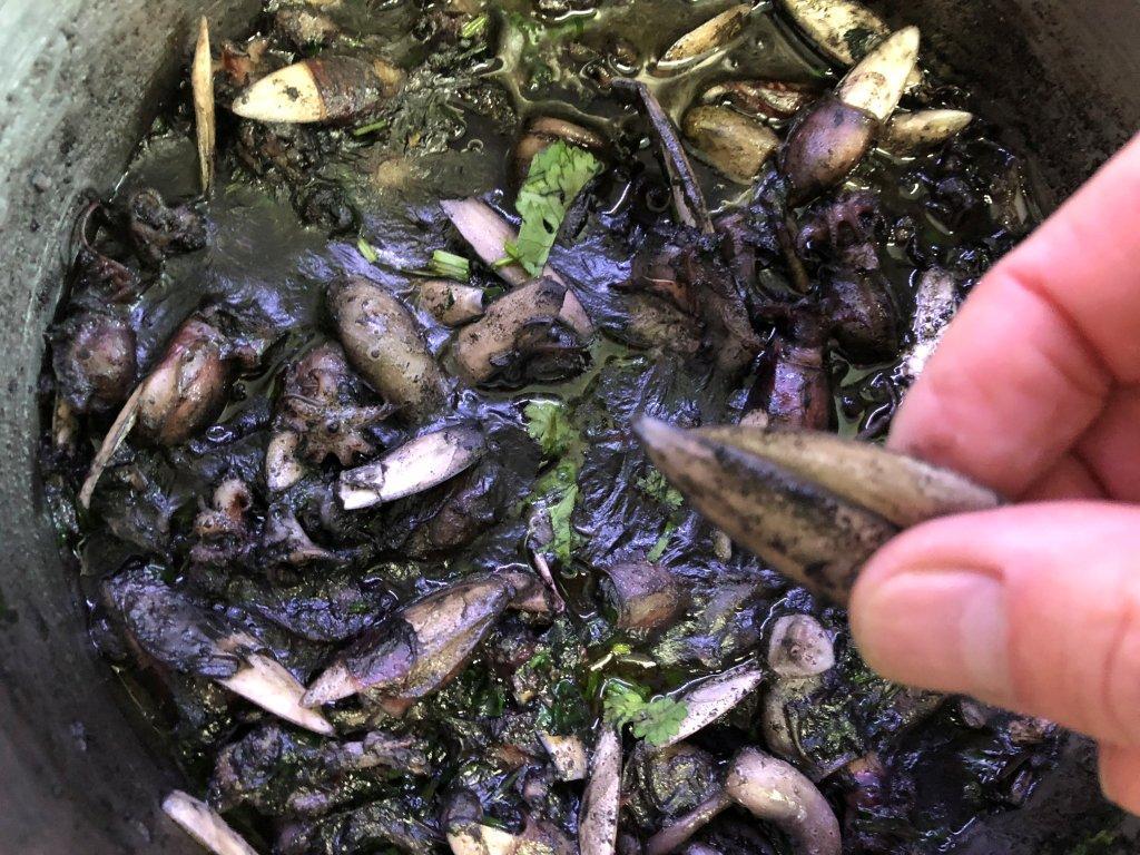 Choquinhos à Algarvia choquinhos à algarvia Choquinhos à Algarvia IMG 5873