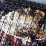 Dourada escalada na grelha, a melhor maneira de comer peixinho