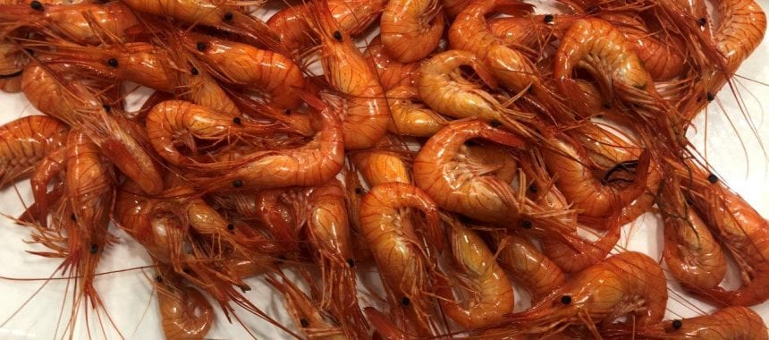 Restaurante Casa Chupa Ovos – A Guarda (Galiza)